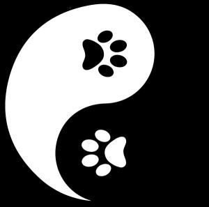 ann arbor holistic veterinarian